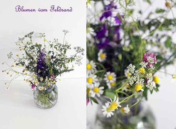 Blumen-Feldrand