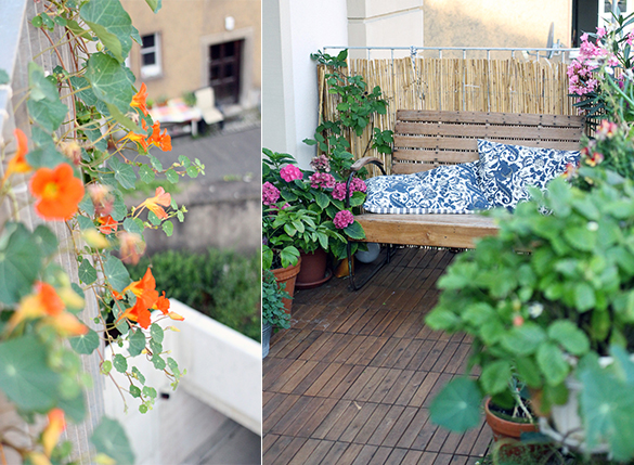 balkon impressionen garten fr ulein der garten blog. Black Bedroom Furniture Sets. Home Design Ideas