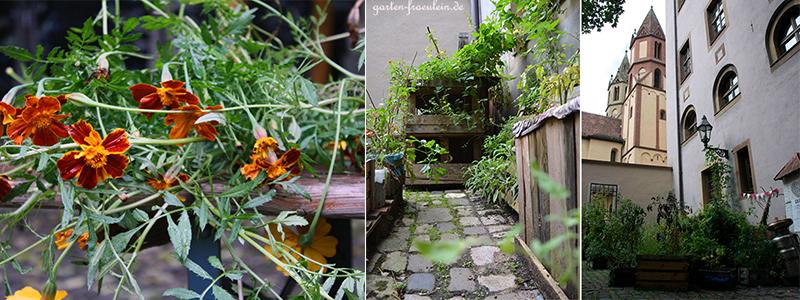 Urban-Gardening-Wuerzburg