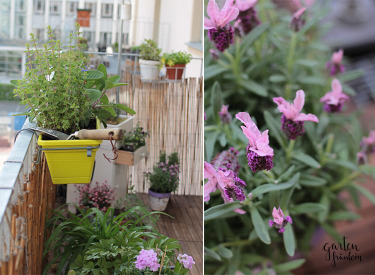 Balkon-Garten