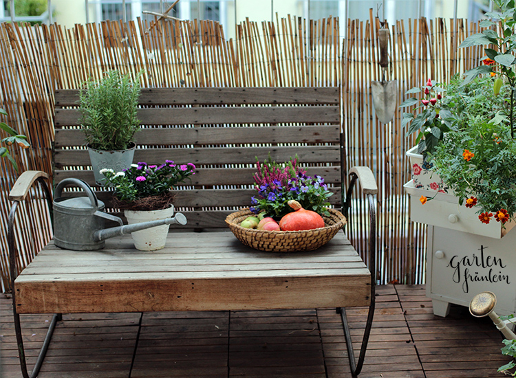 herbst am balkon garten fr ulein der garten blog. Black Bedroom Furniture Sets. Home Design Ideas