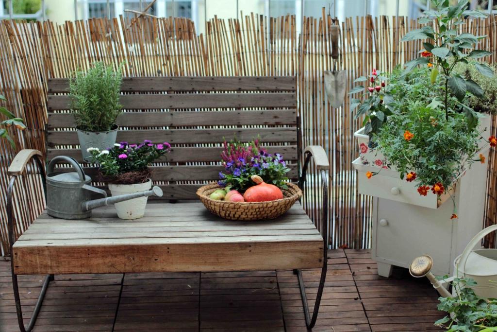 Herbst am Balkon - Jetzt auf dem Garten Blog vom Garten Stil