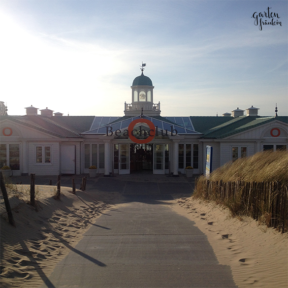 beachclub-o
