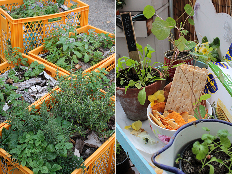 Wasa-Gardening