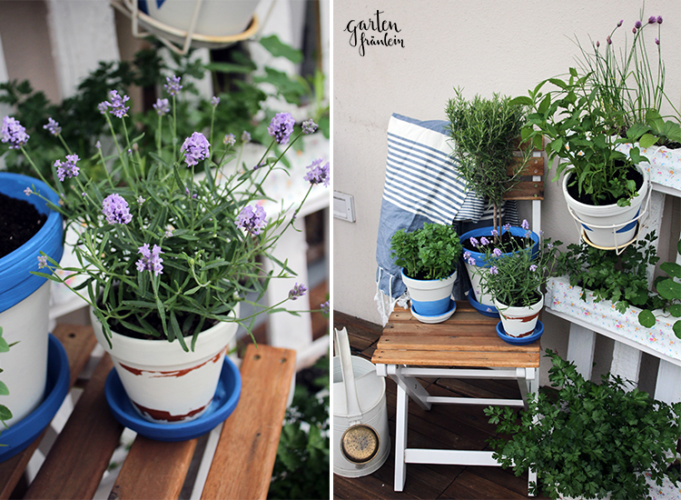 Blumentoepfe-DIY