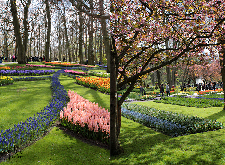 keukenhof-april