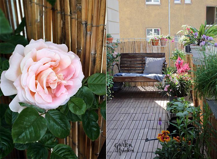 Balkon-Gartenfraeulein