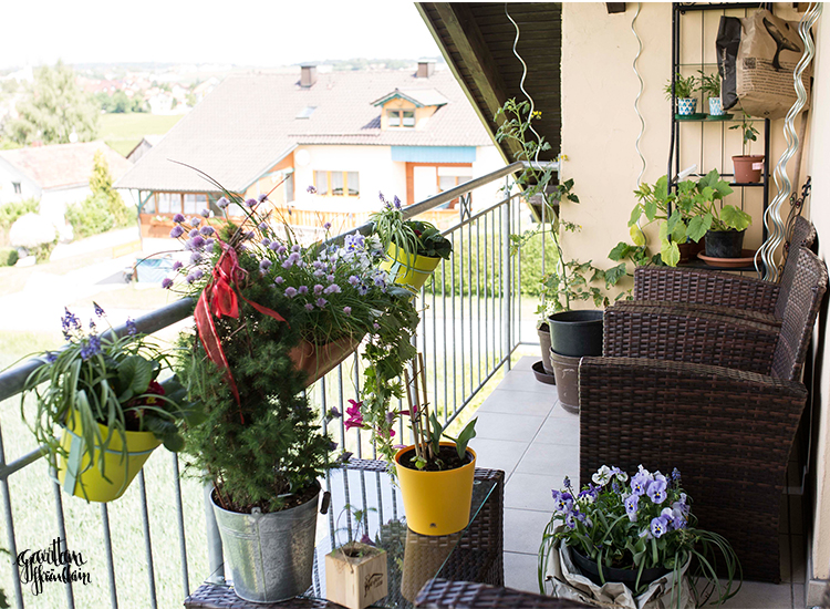 balkonversch nerung mit dem garten fr ulein garten fr ulein der garten blog. Black Bedroom Furniture Sets. Home Design Ideas