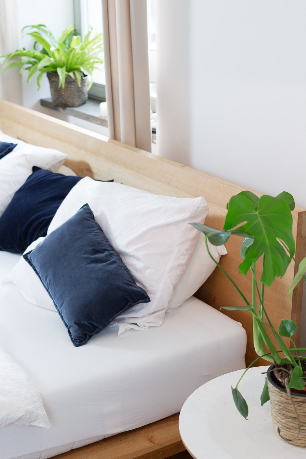 Zimmerpflanzen im Schlafzimmer - Garten Fräulein