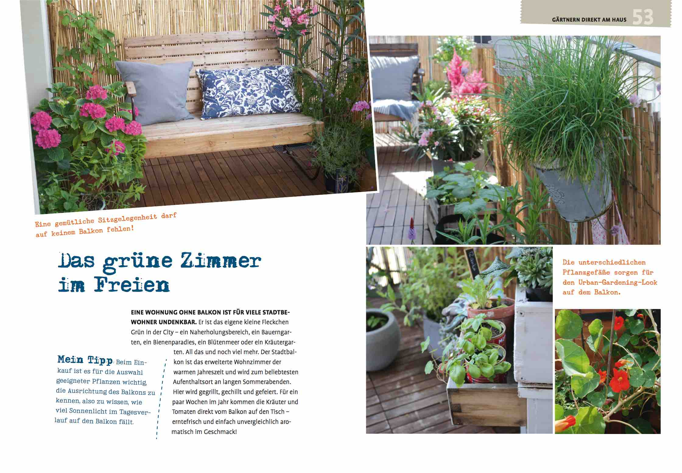 mein kleiner stadtgarten garten fr ulein der garten blog. Black Bedroom Furniture Sets. Home Design Ideas