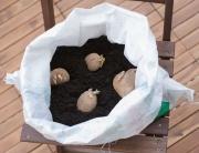 kartoffel pflanzsack selber machen
