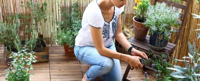 Balkonpflanzen-pflege