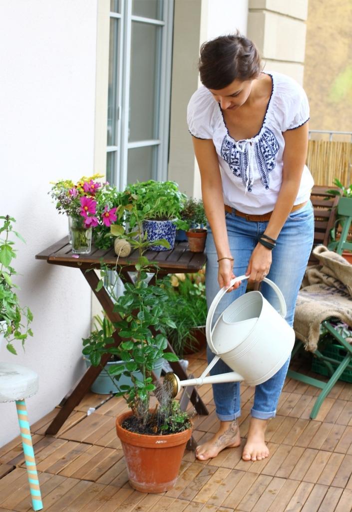 Balkonpflanzen-pflegen-