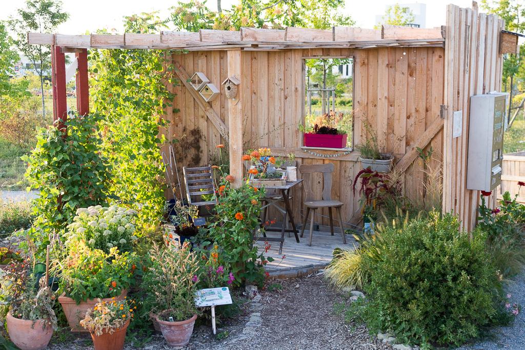 Von Null Auf Garten In Sieben Monaten Zum Stadtgarten Garten