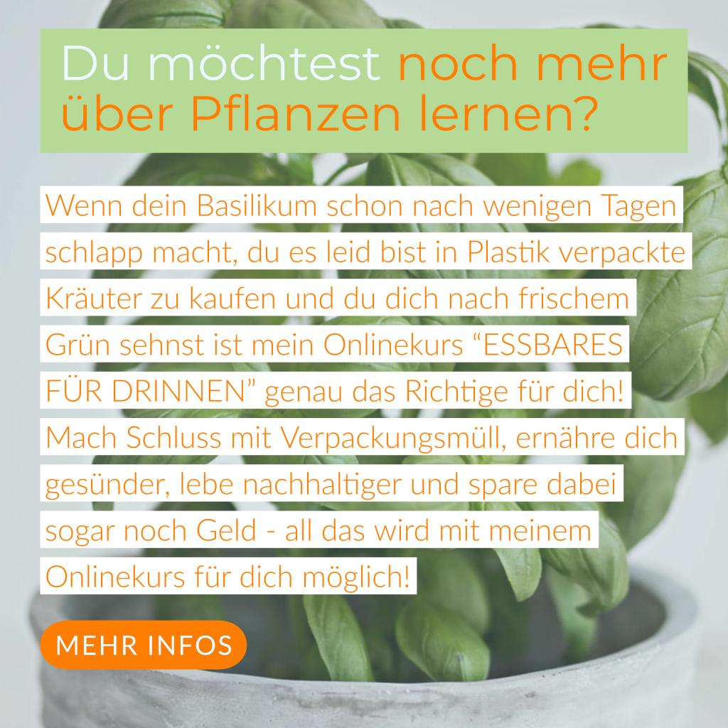 https://mailchi.mp/garten-fraeulein.de/onlinekurs