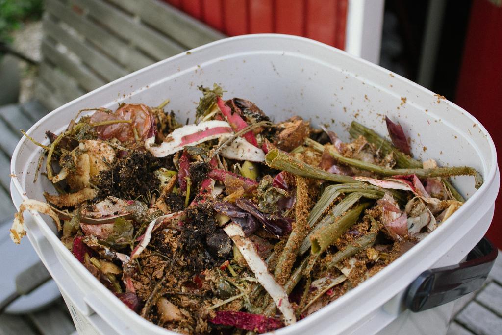 Bokashi - Fermentiertes für deine Pflanzen - Garten Fräulein - Der Garten Blog
